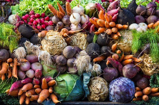 На полях тюменской агрофирмы выдался рекордный урожай лука