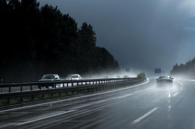 ВОмской области сильный циклон завалил дорогу деревьями