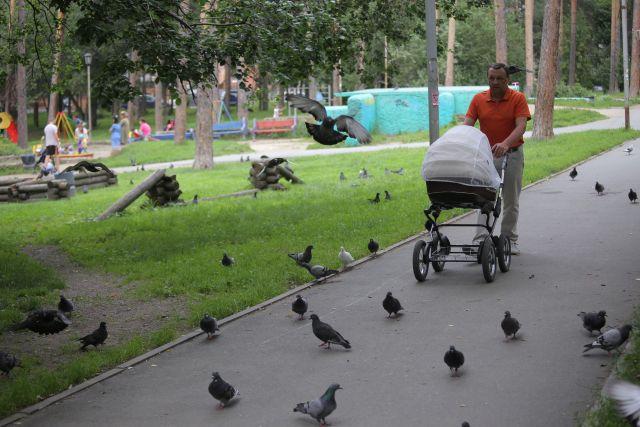 Новосибирцы любят отдыхать в Тимирязевском парке.