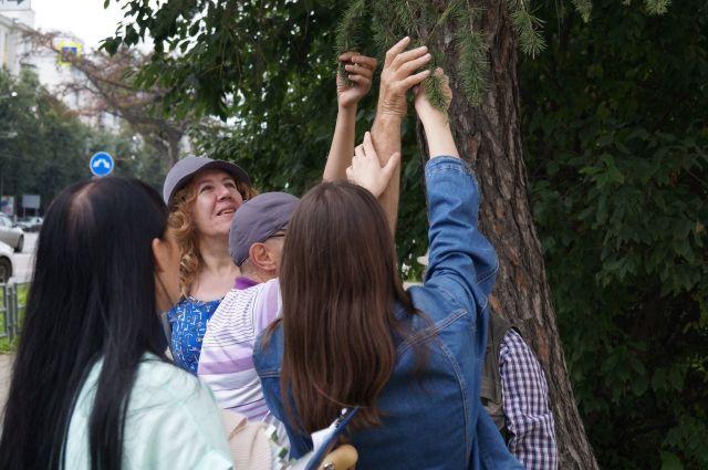 Участников мероприятия познакомили с городской флорой.