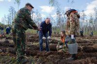 Ещё в начале мая Борис Дубровский лично участвовал в высадке сосен на территории Челябинского городского бора.