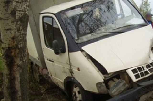 ВПензенской области «ГАЗель» под управлением подростка влетела вдерево, пассажир умер