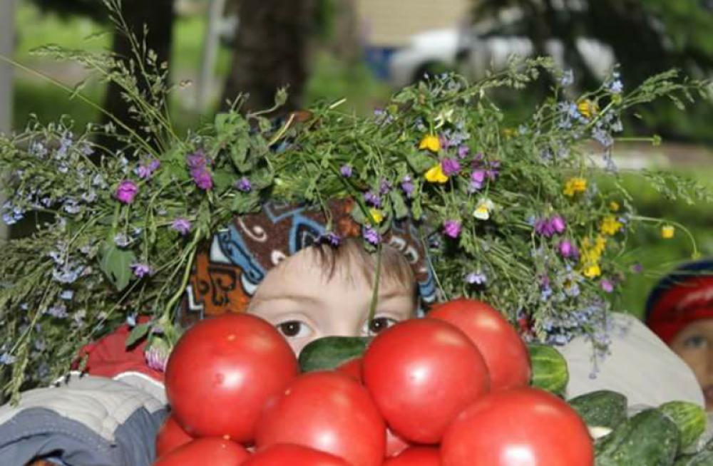 Елена Обычная с урожаем с огорода вместе с внуком Иваном. «У меня в огороде вырос третий внук Иван»,- шутит автор фото.