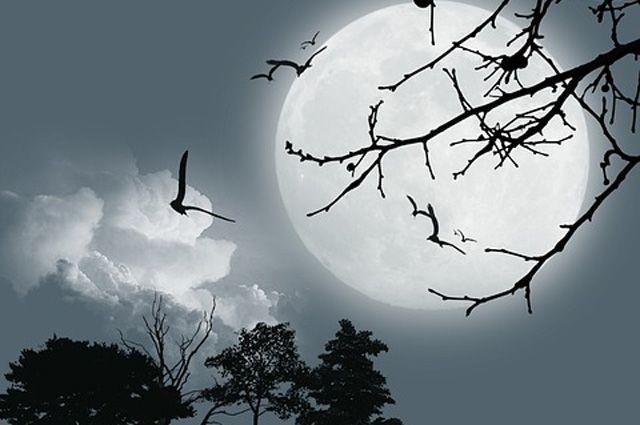 Луна в ночь затмения поменяла цвет