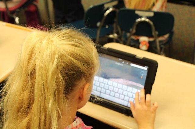 Вбиблиотеки районов Омской области проведут Интернет