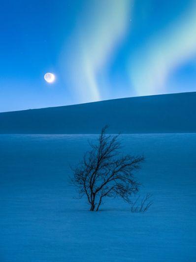 Томми Элиассен (Норвегия). Фотографу удалось запечатлеть одновременно Луну, Марс и северное сияние в горном массиве Сальтфьеллет в Норвегии.