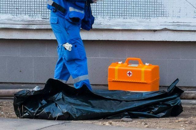 В Мариинском районе иномарка насмерть сбила пешехода.