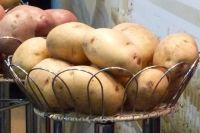 Цена на картофель летом выросла