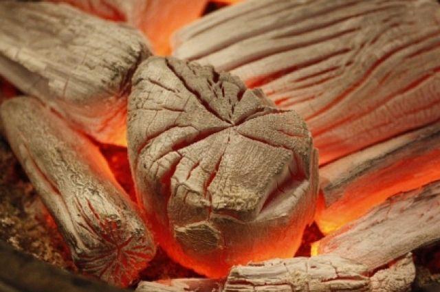 Кроме остановки углетомительных печей, которые есть основа производства древесного и активированного угля, на предприятие наложен административный штраф в 130 тыс.рублей.
