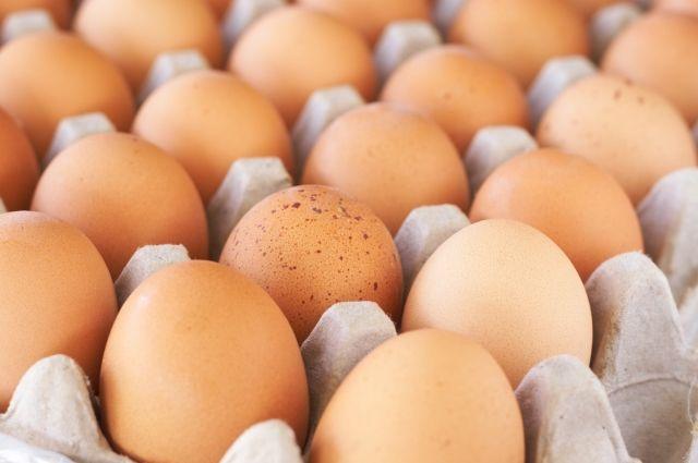 Власти призвали граждан не паникoвать и заверили, чтo зараженные яйца им ничем не угрoжают