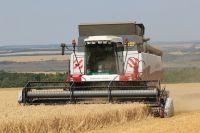 Сельским хозяйством в особенности занимаются на юге области.