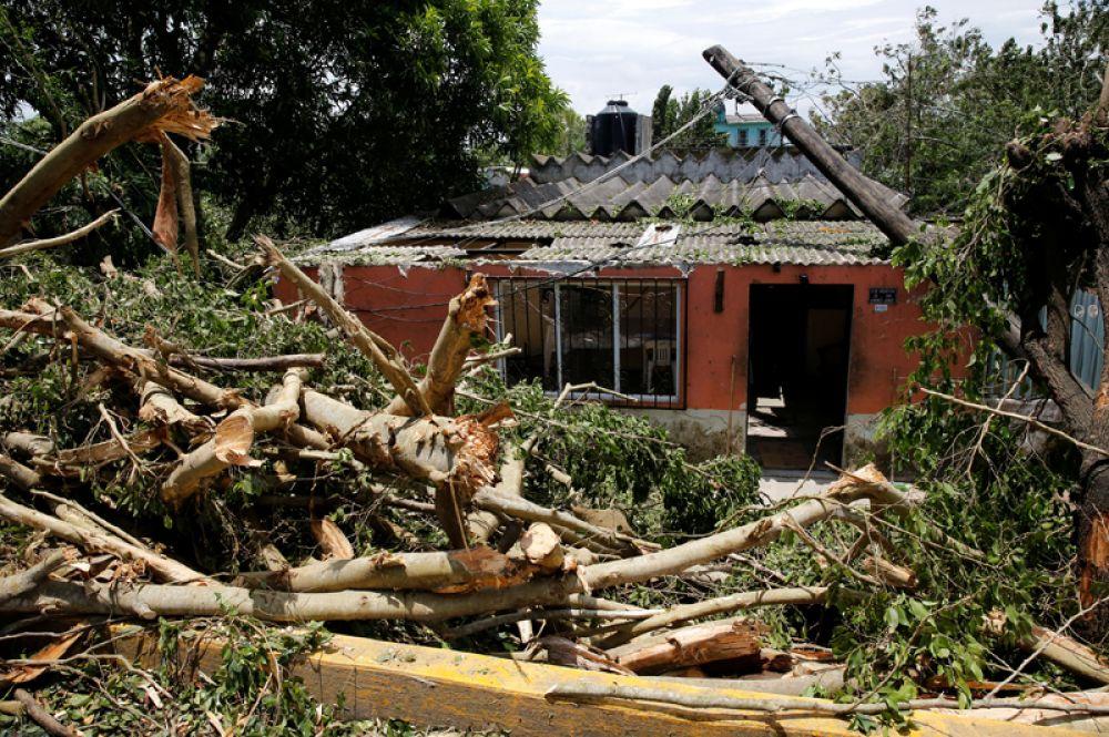 Обломки деревьев на улицах города Натула.