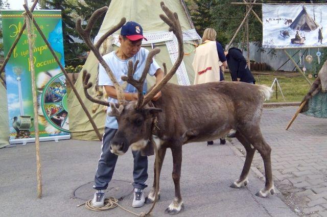 ВКрасноярске проходит фестиваль коренных народов мира