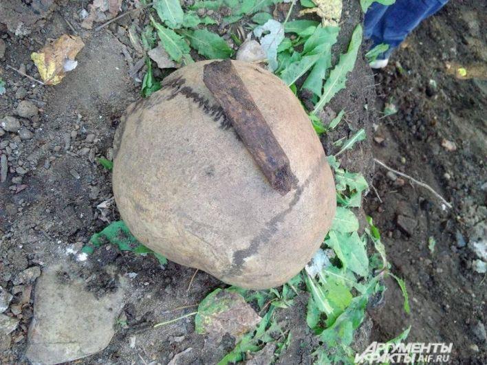 Обнаруженный череп отправили на экспертизу.