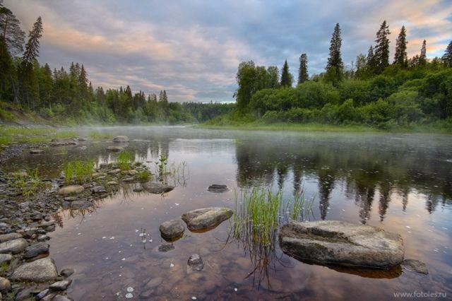 Река Солза - самый чистый водоём на Европейском Севере