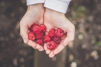 Следы от ягод можно легко очистить при помощи подручных средств.