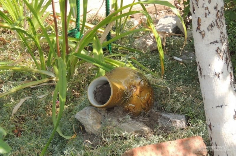 Старая ваза может украсить практически любую клумбу (ул. Артюшкова, 21).