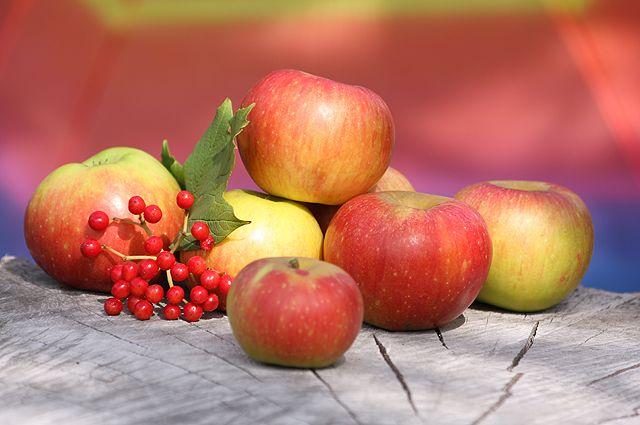 Яблоком по астме. От каких болезней бережёт этот фрукт