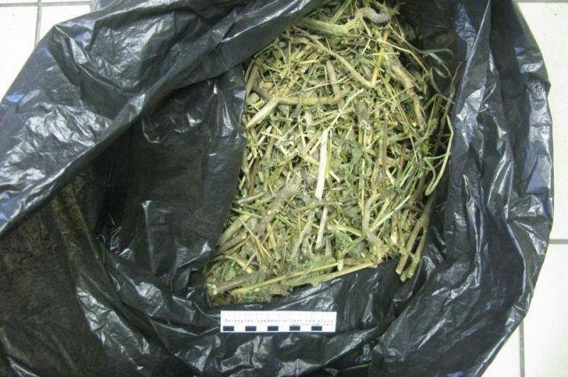 Тюменец нарвал себе марихуаны однако попался на глаза полиции