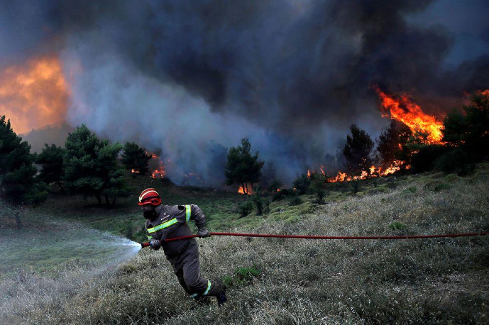 Пожарный борется с огнём возле деревни Меточи к северу от Афин.