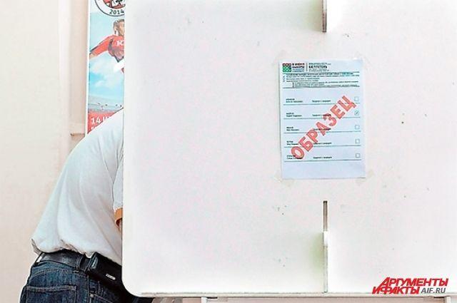 Голосовать москвичи на этих выборах, по прогнозам, будут не очень активно, но, как обычно, придут семьями.