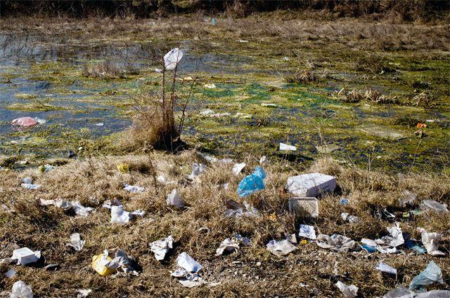 «Засады» против мусора. Как ловят тех, кто засоряет обочины дорог