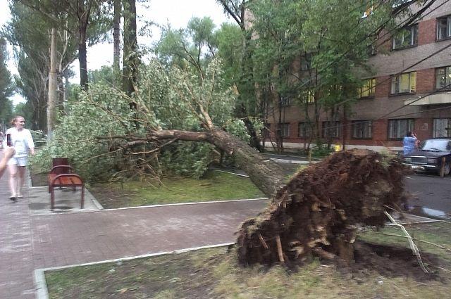 http://images.aif.ru/012/345/fa7069229efc920de40eb0f5d167c50a.jpg