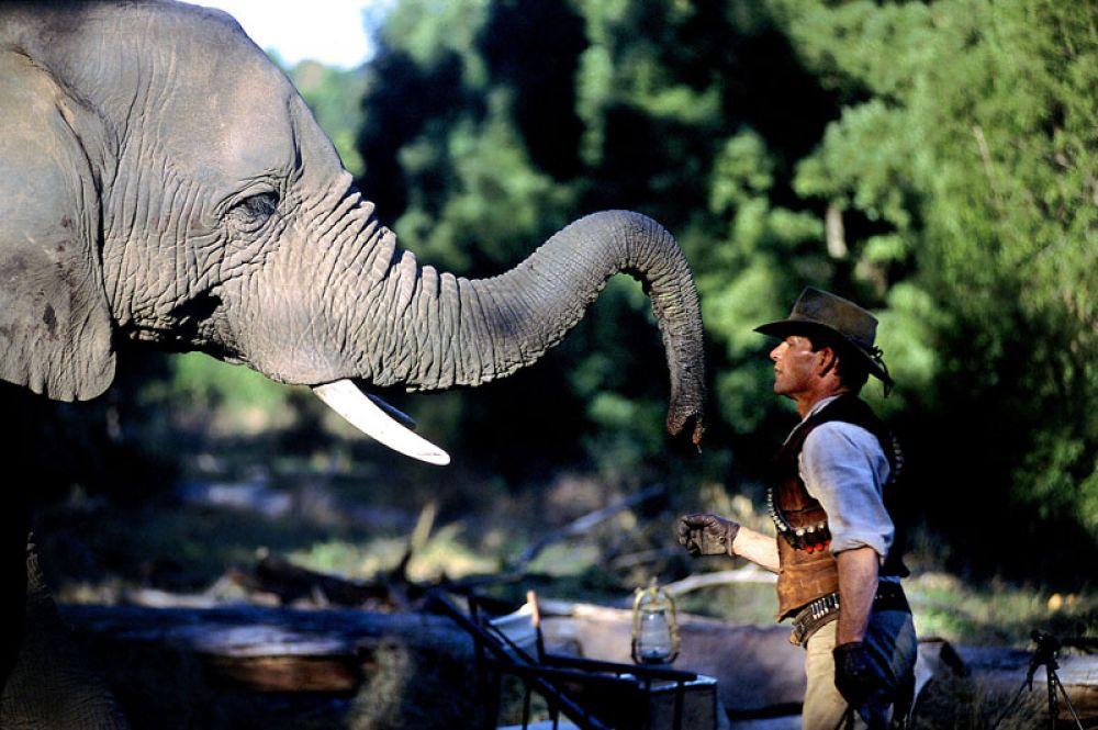 В 2004 году Суэйзи появился на экранах в приключенческом телефильме «Копи царя Соломона» в роли охотника Аллана Куотермейна.
