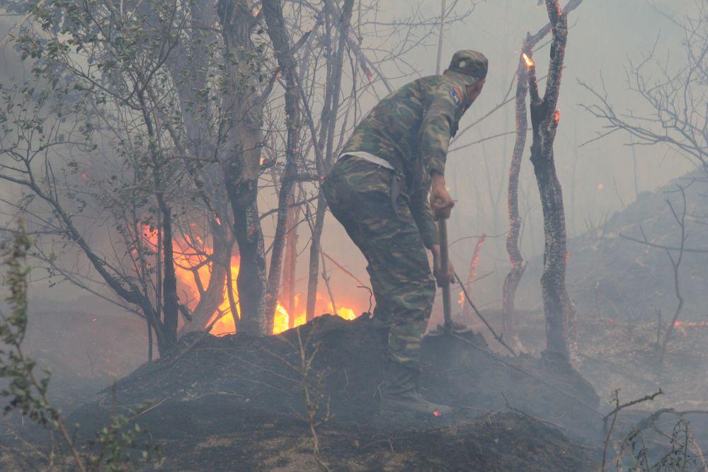 Природному пожару в Усть-Донецком лесничестве присвоен самый высокий - пятый, уровень сложности.