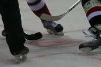 Сибиряки любят хоккей.