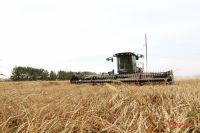 Новые подходы стимулирования аграриев оказались эффективными.