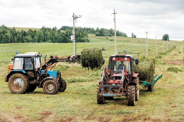 Сегодня сотрудники сельхозпредприятий трудятся в полях круглые сутки.