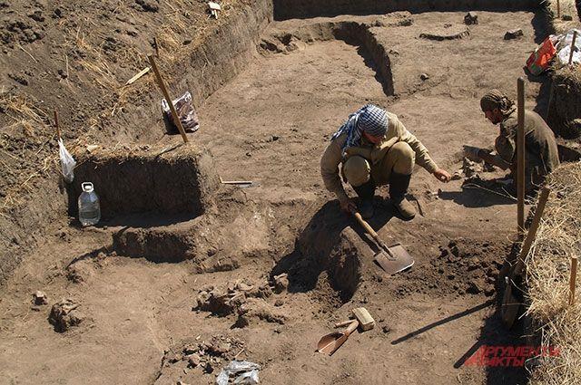 Войне вопреки. Как археологи в ДНР исследуют памятники времен Золотой Орды