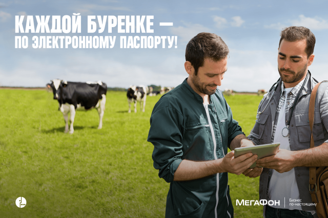 Мобильная платформа «Ветеринария» в действии.