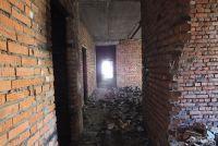 Здесь, в заброшенном здании больницы, погибли мучительной смертью десятки животных