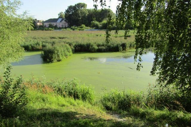 Под Новотроицком местные жители в озере нашли тело рыбака.