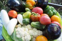 Хороший урожай выдался в Тюменском районе