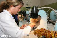 В апреле текущего года в новосибирском аэропорту Толмачёво был пресечен факт незаконного перемещения 291 килограмма янтаря через таможенную границу.