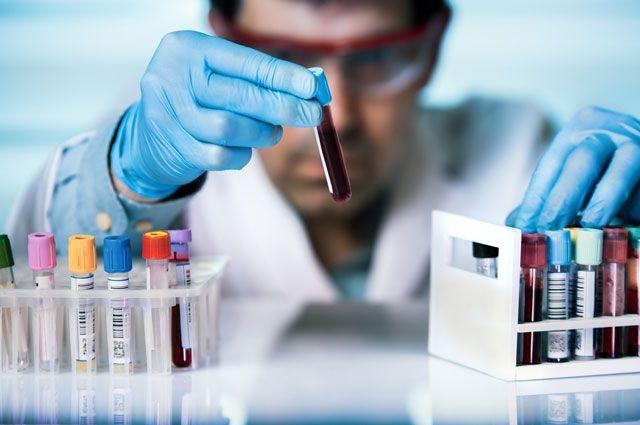 Кровный интерес. Шесть наивных вопросов про анализы | Здоровая жизнь | Здоровье | Аргументы и Факты
