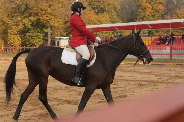 В Тобольске прошли конно-спортивные соревнования в честь ВОВ