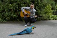 Птичка, которую несколько лет назад привезли из Польши, из-за стресса вырывает себе перья. Лечат ее песнями Шнура.