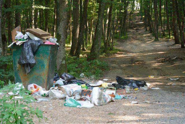 Бизнес призывают активнее заняться переработкой мусора.