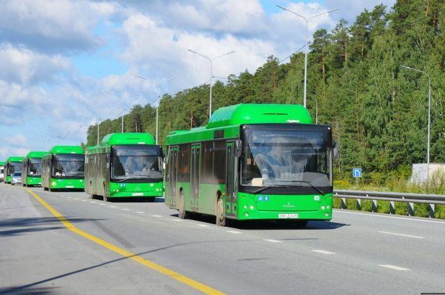 ФАС хочет оштрафовать мэрию Екатеринбурга за«зелёные автобусы»