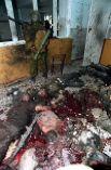 Уничтоженные террористы.