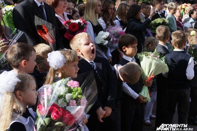 Названы самые многочисленные по количеству учеников школы Калининграда.