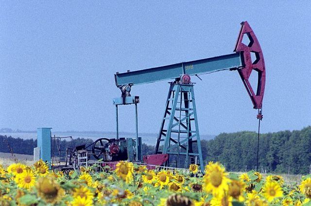 Русская нефть в2015-м году стала дороже на27%