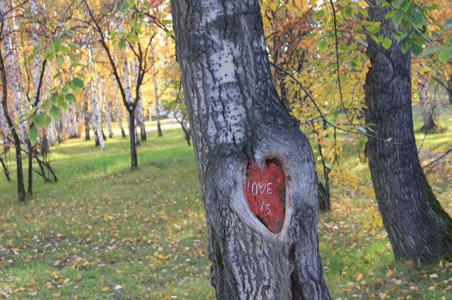Осенний Иркутск.