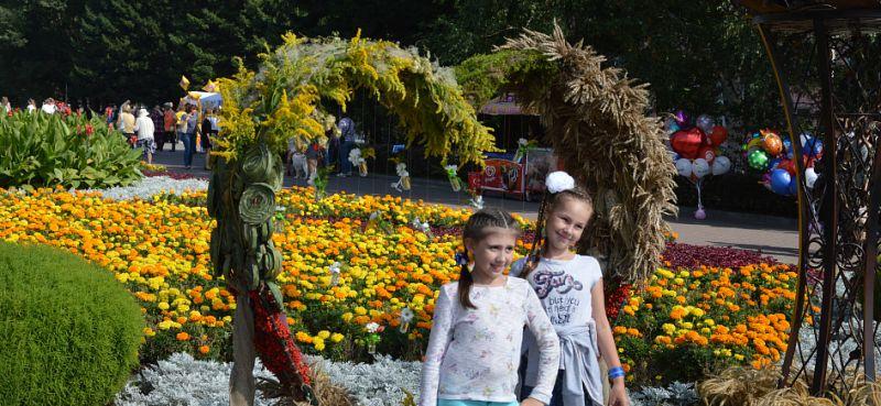 Выставка цветов в барнауле 2017 год