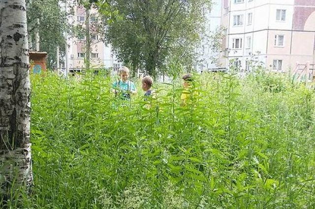 Найди детей в архангельской траве.