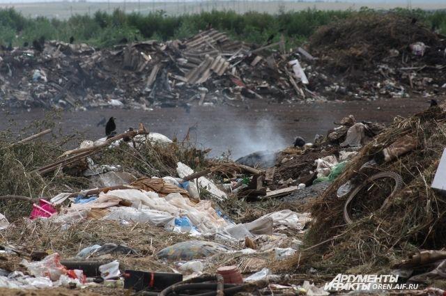 На данный момент в Омске работает только один мусорный полигон.